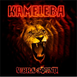 Vibra Sound