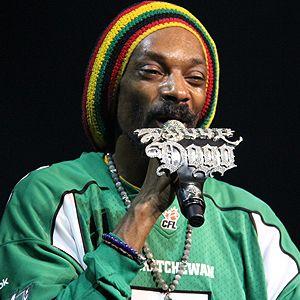natural vybz reggae